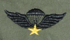 US Army rintamerkki, Vietnamese jump wings - basic, subdued