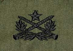 US Army rintamerkki, Vietnamese Ranger patch, subdued